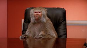 tech baboons