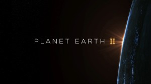 how-the-bbc-makes-planet-earth-look-like-a-hollywood-movie