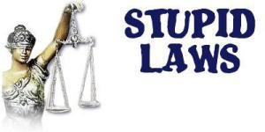 stupid-laws